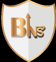 Bitsense (BINS)