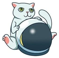 Cat Token (CAT)
