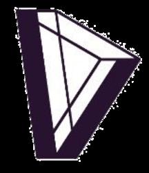 Dvision Network (DVI)