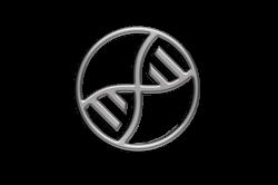 XDNA (XDNA)